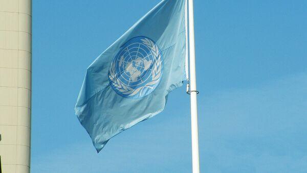 ANO karogs - Sputnik Latvija