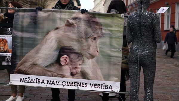 Пикет защитников животных - Sputnik Латвия