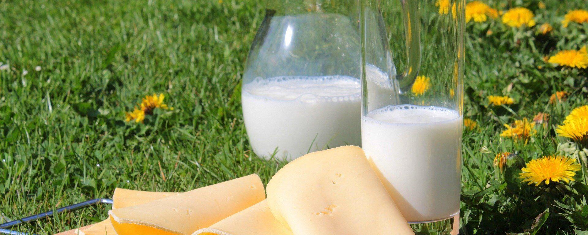 Молочные продукты - Sputnik Латвия, 1920, 18.08.2021