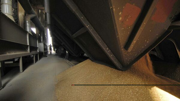 Krievijas eksportētāji atkal var piegādāt graudus pa dzelzceļiem - Sputnik Latvija