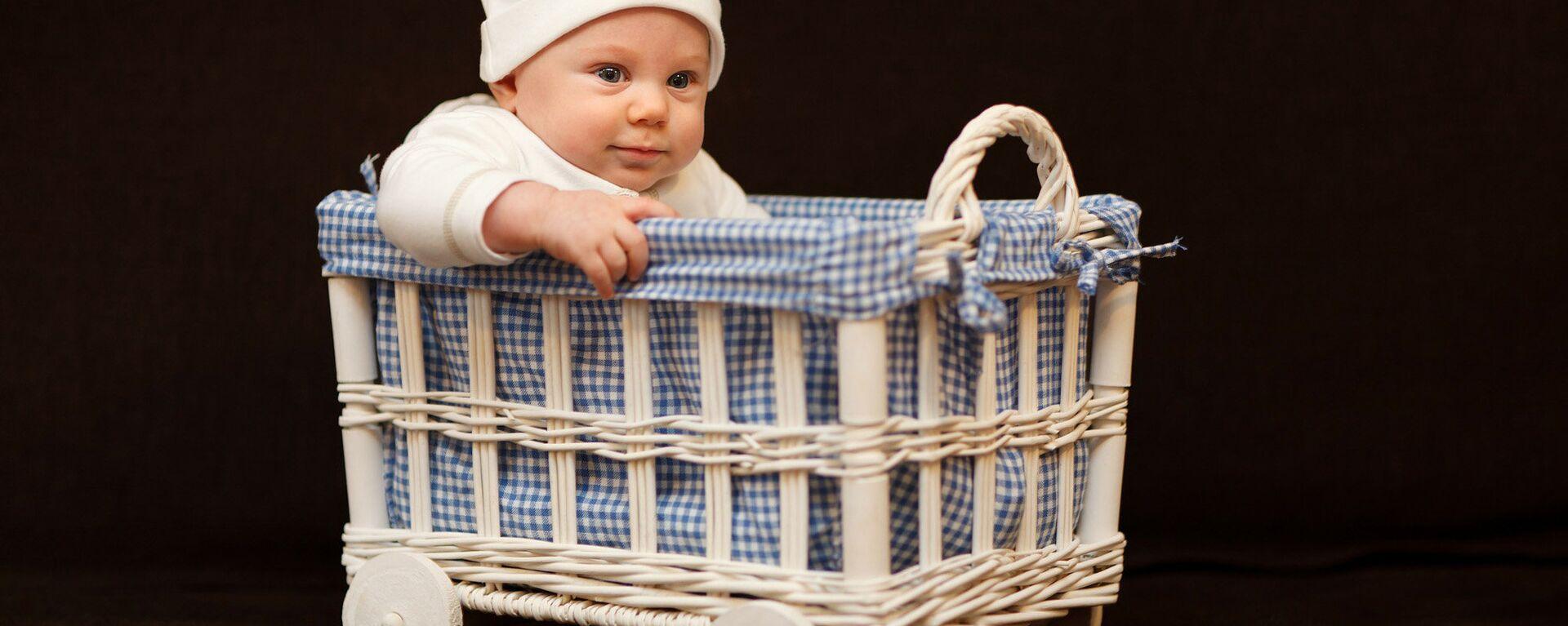 Младенец в корзинке - Sputnik Латвия, 1920, 20.01.2021