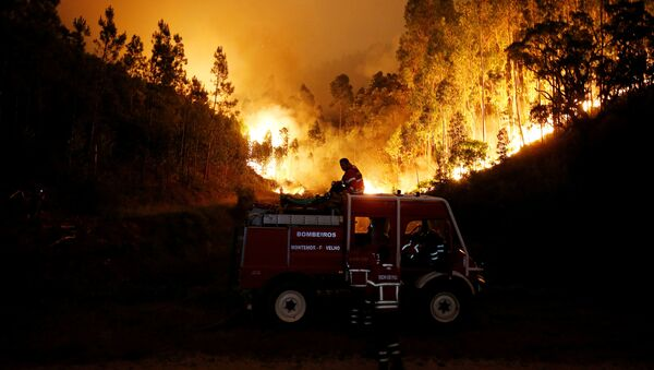 Пожарные тушат лесной пожар возле Буки в центральной Португалии - Sputnik Латвия