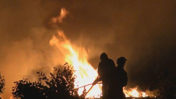 Meža ugunsgrēkos Portugālē cietuši vairāki desmiti cilvēku - Sputnik Latvija