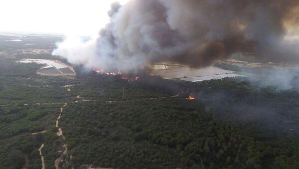 Лесной пожар на юге Испании привел к эвакуации 1000 человек - Sputnik Латвия