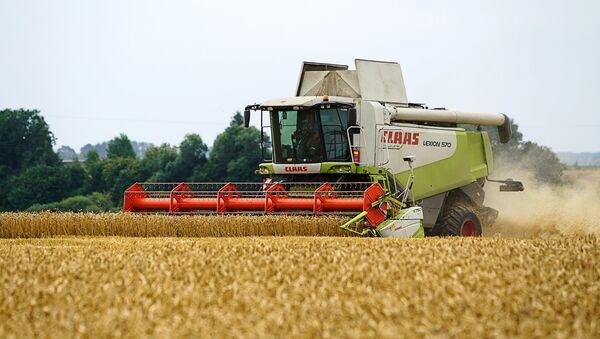 Уборка пшеницы - Sputnik Латвия
