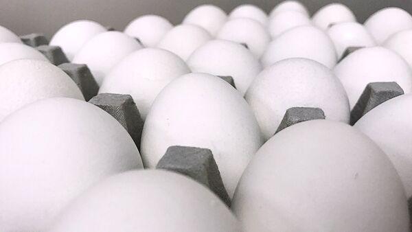 Куриные яйца - Sputnik Латвия