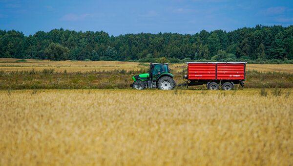 Сельское хозяйство основной вид деятельности в Айзпуте - Sputnik Latvija