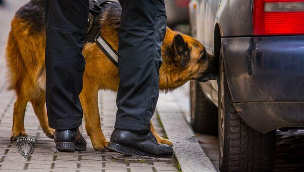 Полиция провела учения по освобождению заложников в центре Риги - Sputnik Латвия