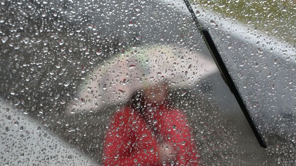 Дождь - Sputnik Latvija