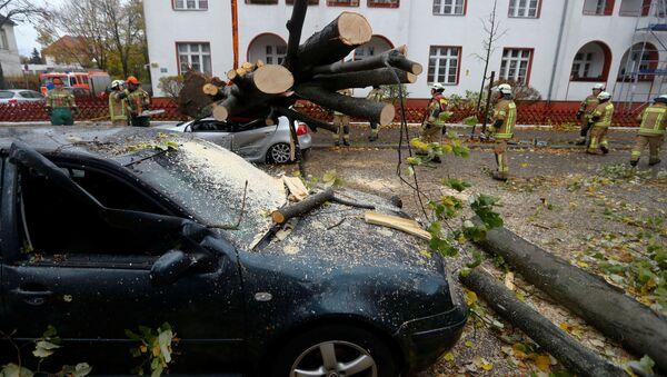 Поврежденные машины в результате падения деревьев в Германии - Sputnik Латвия