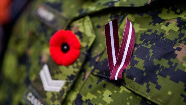 Sarkanā magone - visu militāro un civilo bruņoto konfliktu upuru simbols - Sputnik Latvija