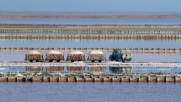 Добыча соли на озере Сасык-Сиваш в районе города Евпатория, Крым - Sputnik Latvija