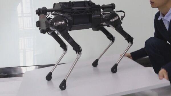 Китайские разработчики создали робособаку Laikago - Sputnik Латвия
