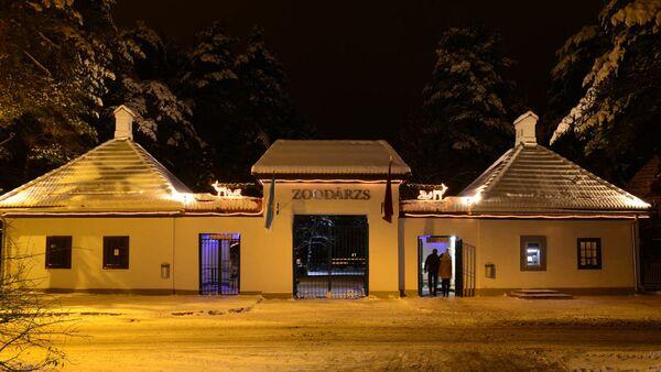 Рижский зоопарк приглашает на Зимние ночи - Sputnik Латвия