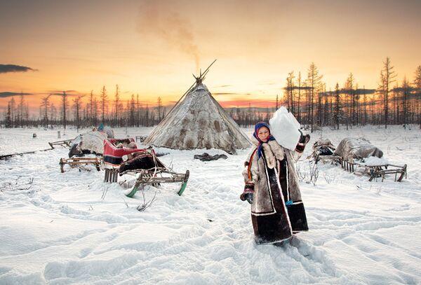 Снимок российского фотографа Alexey Suloev, победивший в номинации Commended - Sputnik Латвия