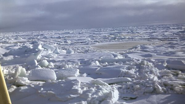 Зима - Sputnik Latvija