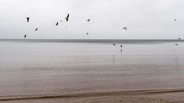 Пляж Юрмалы - Sputnik Латвия
