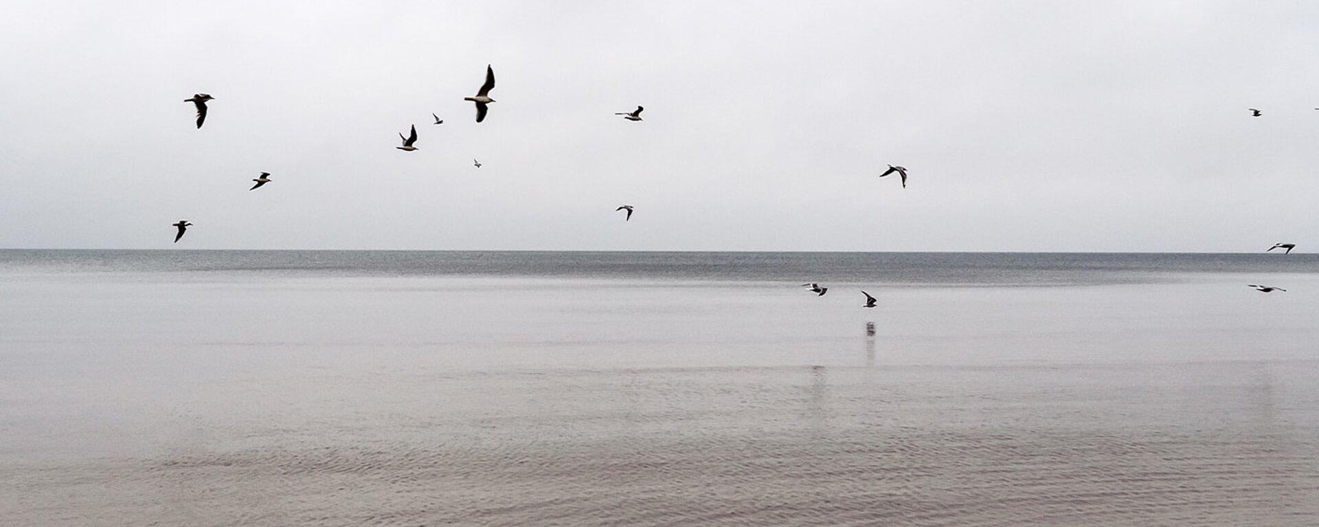 Пляж Юрмалы - Sputnik Латвия, 1920, 15.07.2021