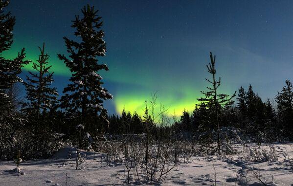 Ziemeļblāzma Lovozero ciema apkaimē Murmanskas apgabalā - Sputnik Latvija