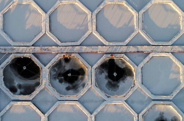 Zivjaudzētavas darbinieki pie Jeņisejas upes, Krasnojarskas novads, Krievija - Sputnik Latvija