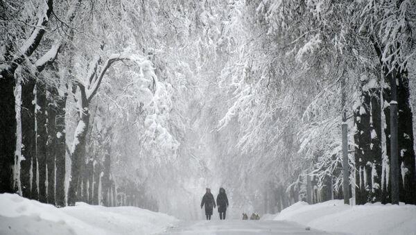 Sniegotā aleja Vorobjovu kalnos - Sputnik Latvija