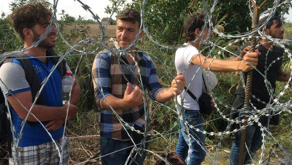 Мужчины перед забором, построенным на границе - Sputnik Латвия