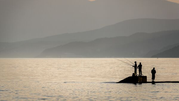 Морская рыбалка в поселке Рыбачье в Крыму - Sputnik Латвия