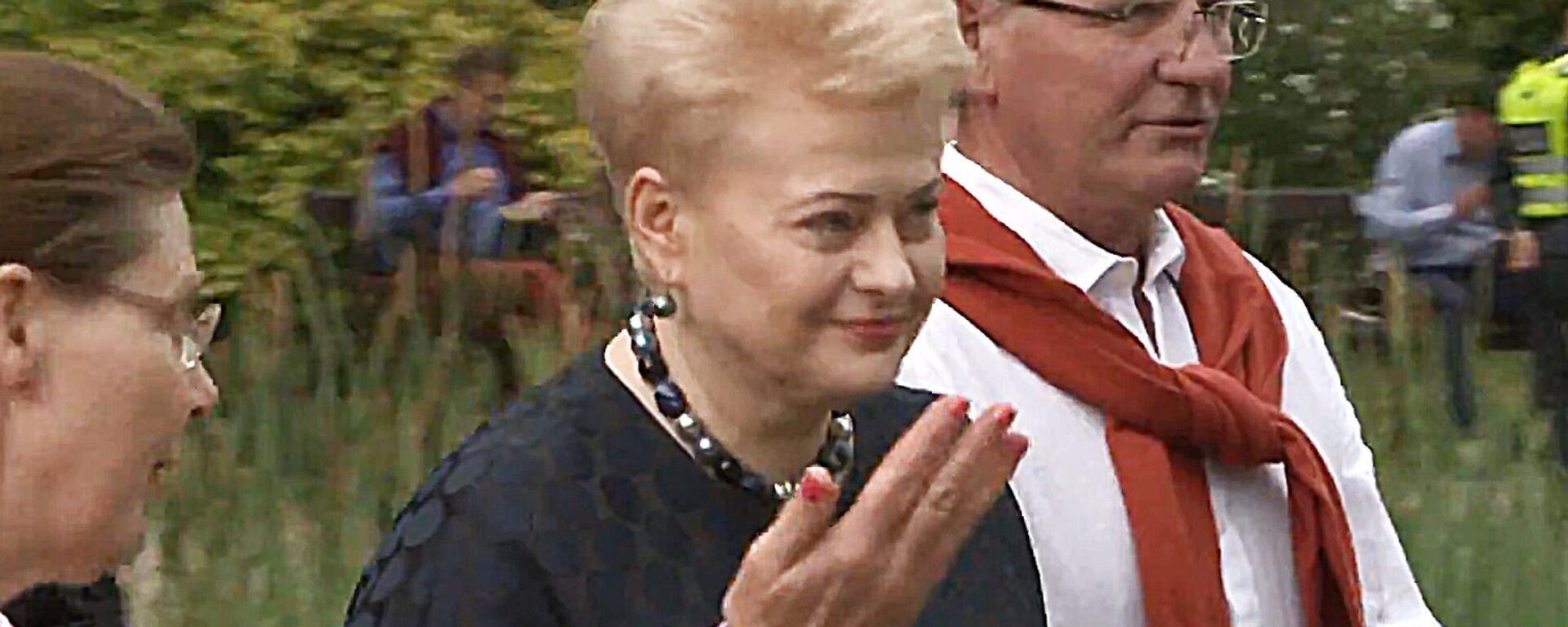 Даля Грибаускайте поучаствовала в празднике летнего солнцестояния - Sputnik Латвия, 1920, 13.06.2018