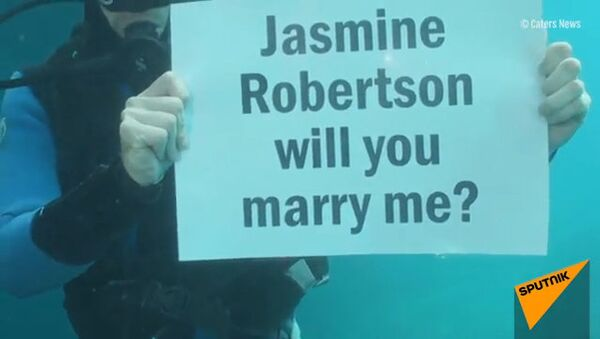 Austrālietis bildinājis draudzeni zem ūdens - Sputnik Latvija