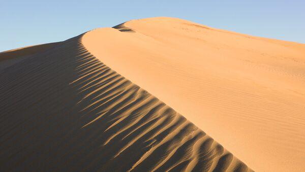 Пустыня, которой быть не должно - Sputnik Латвия