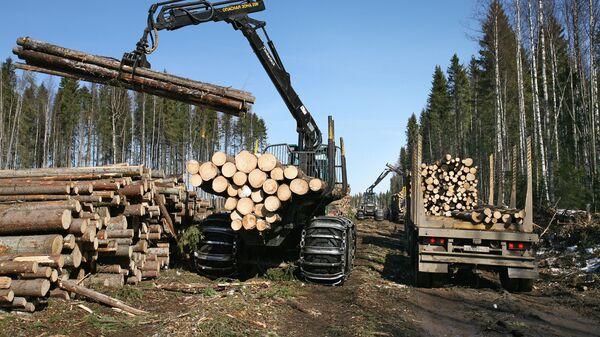 Заготовка леса. Архивное фото - Sputnik Latvija
