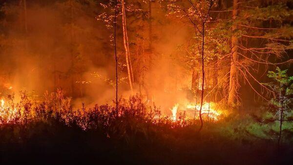 Пожар в Талсинском крае - Sputnik Латвия