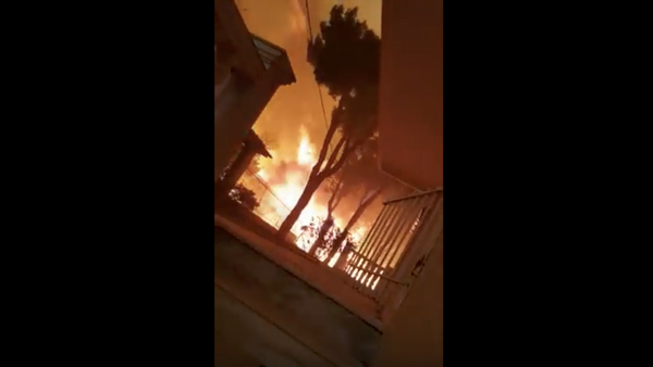 Glāba kaķi un nonāca ugunsgrēka epicentrā – šokējošs video no Grieķijas - Sputnik Latvija