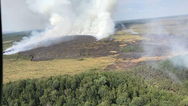 Пожар в Раматской волости Латвии у границ Эстонии - Sputnik Latvija
