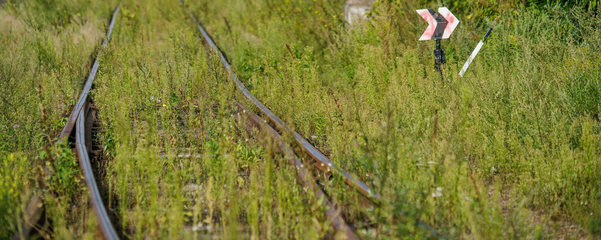 Железная дорога - Sputnik Latvija, 1920, 27.07.2021