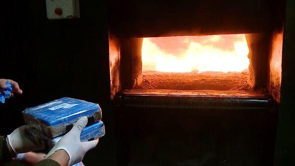 В Аргентине сожгли 362 кг кокаина - Sputnik Латвия