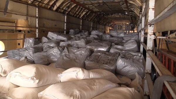 Самолет МЧС России доставил в Сирию 34 тонны гумпомощи - Sputnik Латвия