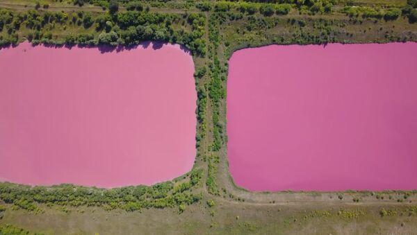 Розовые озера под Самарой - Sputnik Латвия