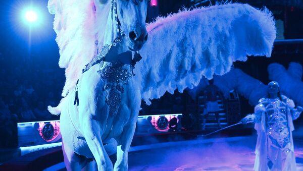 Конь из номера Белый Пегас - Sputnik Латвия