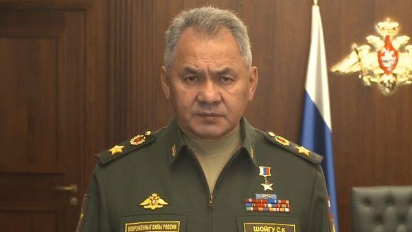 Сергей Шойгу о передаче Сирии комплексов С-300 - Sputnik Латвия