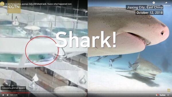 Ķīnā tirdzniecības centra strādniece iekritusi baseinā ar izsalkušām haizivīm - Sputnik Latvija