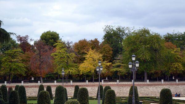 Осень в Мадриде  - Sputnik Латвия