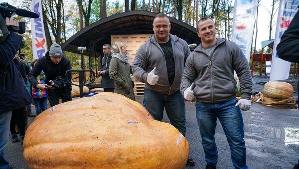 Тыква победитель на чемпионате Самая большая тыква в Латвии - Sputnik Латвия