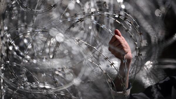 Dzeloņstieples uz robežas - Sputnik Latvija