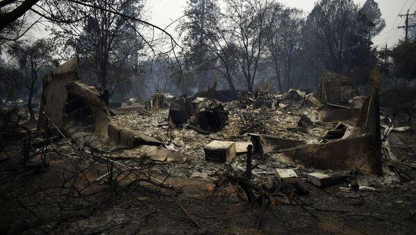 Лесные пожары в Калифорнии - Sputnik Latvija